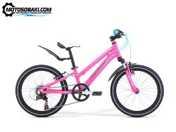 Велосипед Merida Matts J20 Girl Pink/Blue/Grey 2019