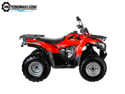 Квадроцикл WELS ATV Bison (50 куб.см, 18 л.с.)